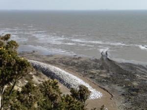 beach:clifftop