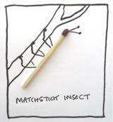 Matchstick insect