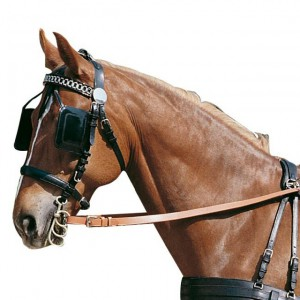 bridle-with-blinkers
